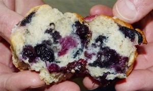 Hands holding a split open blueberry muffin.