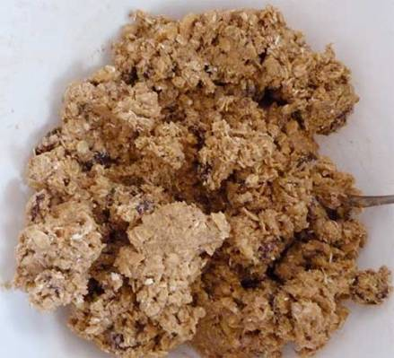 Cookie dough after adding the oats, walnuts ad cherries.