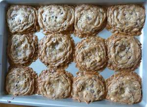 Baked chocolate chip cookies on baking sheet. Cookies are all touching.