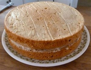 Plate with both layers of cake, icing in between - no icing on outside yet.